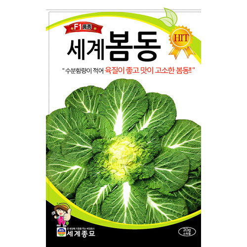 korean cabbage seed  ( 20g / 6000 seeds )