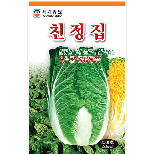korean cabbage seed  ( 1000 seeds )