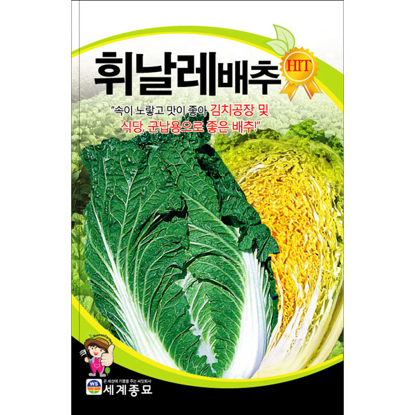 korean asia cabbage seed ( 1000 seeds )