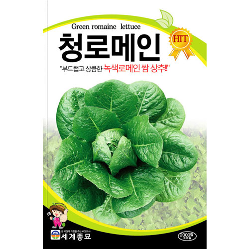green romaine lettuce seed  ( 2000 seeds )
