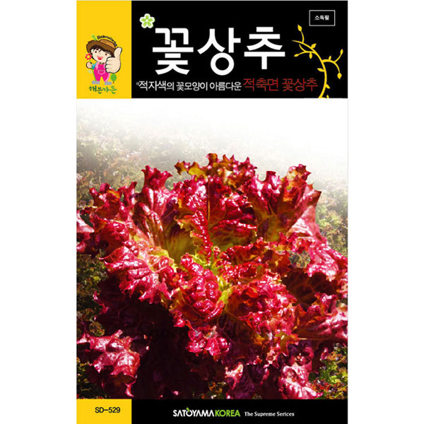 red lettuce seed  ( 3000 seeds )