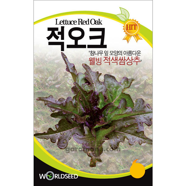 lettuce red oak seed  ( 2000 seeds )