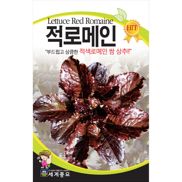 red romaine lettuce seed  ( 2000 seeds )